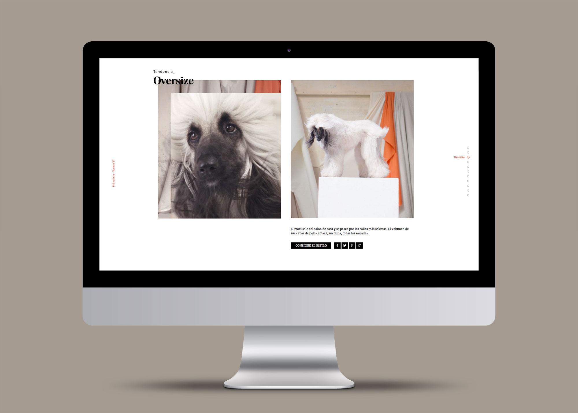 metode-design-nosonunamoda-02